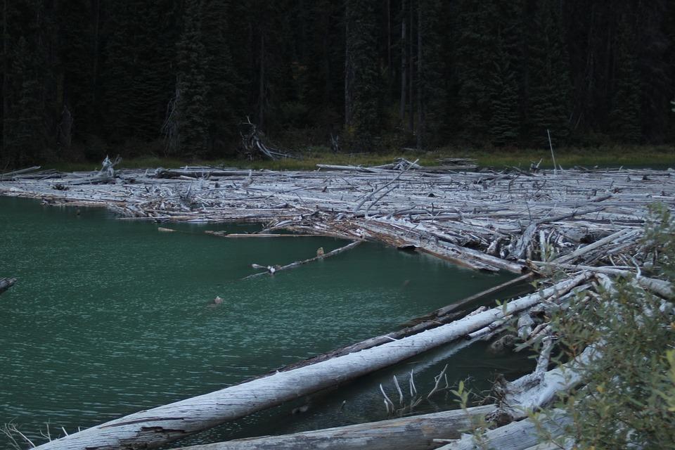 Log jam water-942170_960_720